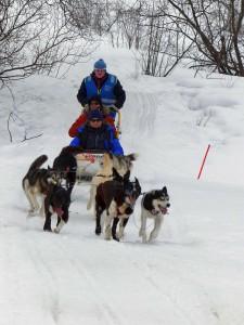 Unterwegs mit Hundeschlitten in Kirkenes. © Foto: Dr. Bernd Kregel