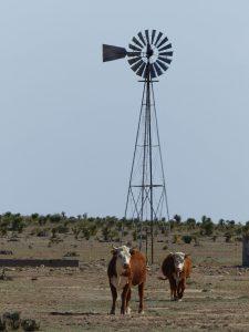 Wasserpumpe auf texanischer Viehweide. Foto: © 2016, Dr. Bernd Kregel