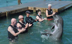 Delfin-Auftritt in Hawks Cay. Foto: © Dr. Bernd Kregel, 2014