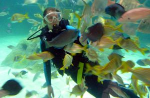 Florida Keys Aquarium in Marathon. Foto: © Dr. Bernd Kregel, 2014