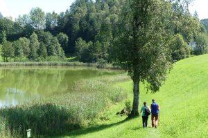 "Wandern mit ""Ossi"" am Frauensee. © Foto: Dr. Bernd Kregel, 2016"