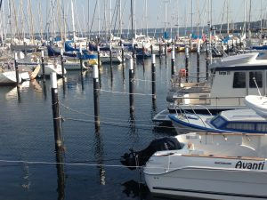 Impressionen vom Ostseestrand bei Kiel. © Foto: Eva-Maria Becker