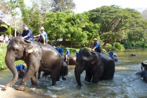 Eine Zugreise durch Nordthailand.