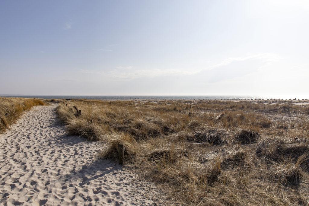 Der Weg hinaus an den Strand.