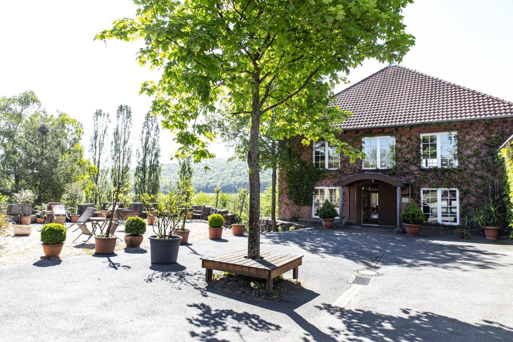 Das Weingut Benz liegt inmitten der Weinberge.